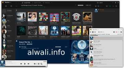 تحميل برنامج MusicBee لتشغيل الوسائط للكمبيوتر